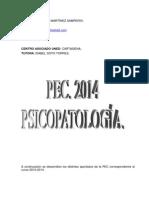 a.PEC. 2014. CRISTINA MARTÍNEZ SAMPERIO. PSICOPATOLOGÍA. UNED..pdf