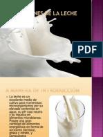 Alteraciones e Higiene de La Leche