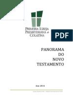 Apostila panorama Biblico do NT 2014 PIPC.pdf