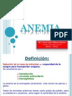 4 ANEMIA