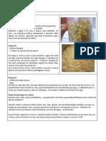 Fermento de Uva Passas.docx