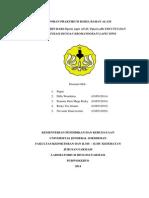 Laporan Praktikum Kimia Bahan Alam