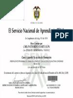 Orientacion de Programas de Formacion a Traves de Tecnicas Didacticas Con Enfasis en Proyectos-7247274369632