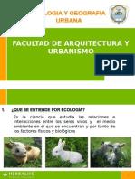 Expo Ecologia Preguntas