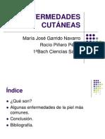 presentaciónENFERMEDADES CUTÁNEAS