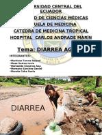 22584775-DIARREA
