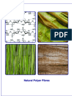 Research into Natural Polymer Fibres