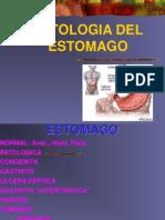 02.- Patologia Del Est Omago