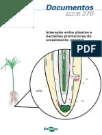 Plantas e Bactérias Promotoras de Crescimento