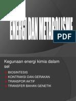 Energi Dan Metabolisme