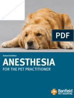 Anesthesia For Pet Practitioner