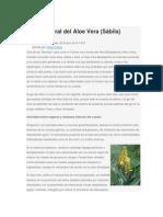 Receta Natural Del Aloe Vera