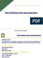 4.Introduccion a La Recuperación Secundaria