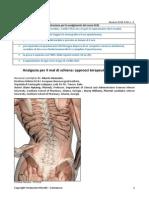 PDF News 239-sciat