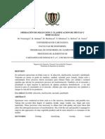 Operación de Selección y Clasificacion de Frutas y Hortalizas