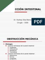 6. Obstrucción Intestinal