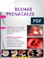 Problemas Prenatales
