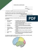 act 6.pdf
