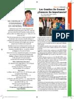 Viguerias Pagina 2 (12)
