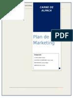 Plan de Marketing Carne de Lapaca