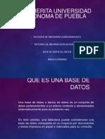 Base de Datos-sig.pablo Carmona