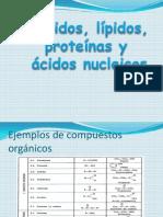 Glucidos, Lípidos y Proteínas