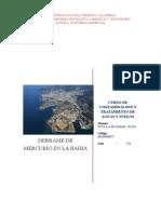 INFORME-DERRAME DE MERCURIO EN LA BAHIA DE MINAMATA JAPON.docx