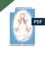 Ibarra, Nestor Daniel - El Aprendiz de Santo
