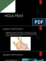 presentaciondelcap26-140604133354-phpapp02