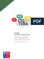 Informe Consulta Patrimonio Aricaparinacota