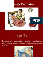 PPT - Haemoragic Post Partum