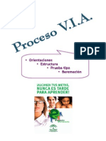 proceso_via_fb.pdf