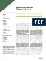 Muestreo y Analisis de Fluidos en El Fondo Del Pozo