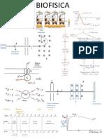 PDF Biofisica Fcup