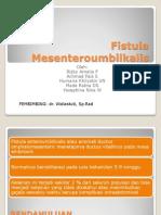 Fistula Mesenteroumbilkalis