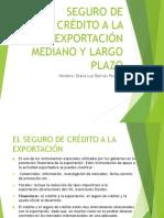 Seguro de Crédito a La Exportación- f