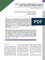 Variabilidad Genética y Recurrencia de Plasmodium Vivax Durante La Malaria Asintomática en Mazán, Iquitos, Perú