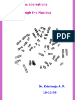 Chromosome Aberrations. 10th December 2009