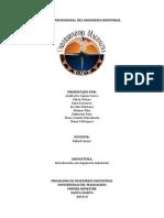 Perfilesocupacionalesyprofesionales.docx