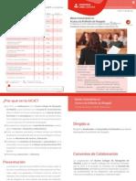 Diptico Master Acceso.pdf