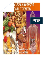 Aula 02 Digestão Dos Nutrientes