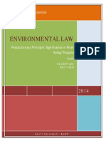 Precautionary Principle.pdf