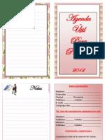 Agenda Util Para Precursor 2012