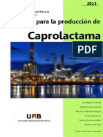 PFC_CaprolacTeam_part11.pdf
