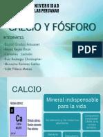 Expo Calcio y Fósforo