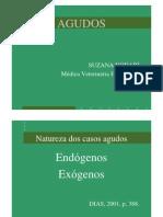 Dra Suzana de Souza Nodari AGUDOS