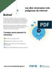 Amenazas Botnet