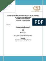 ISC Resumen Dzay Torres 07