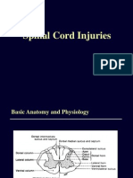 CME Spinal Cord Injury