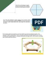Polígonos Regulares. Ejercicios Problema. PDF